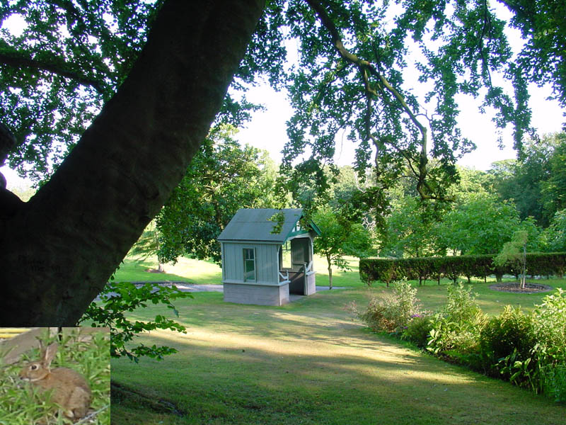 Lawns and gazebo